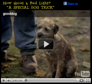 A special dog trick bud light commercial funny videos wacky videos mozeypictures Choice Image