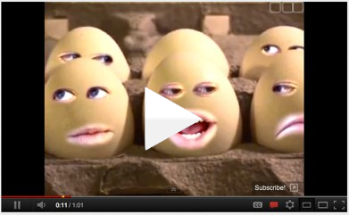 talking eggs, frypan, breakfast, faces, cracked egg, egg shell, video